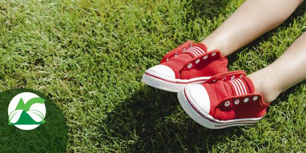Precauciones que debes tener con el césped artificial en verano